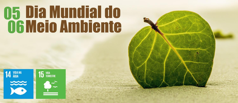 Dia Mundial do Meio Ambiente - ODS 14 e 15