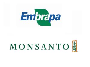 Fundo Embrapa/Monsanto destina R$ 3 milhões para novos projetos