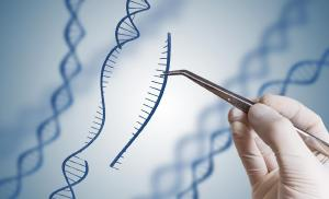 Biotecnologia, o que é, história e como influencia no seu dia a dia
