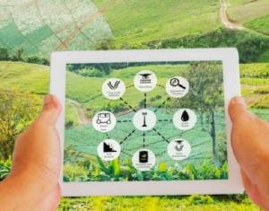 Startups com soluções para setor agropecuário