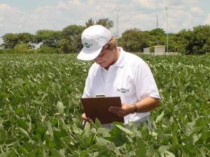 Agricultura brasileira prosperou com pesquisa
