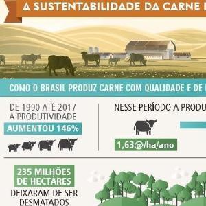 Infográfico da Abiec mostra sustentabilidade da carne brasileira